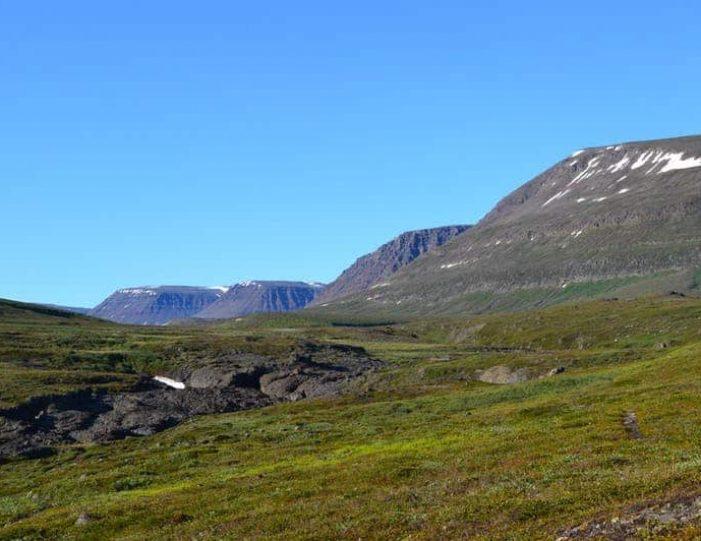 qorlortorsuaq-hike-qeqertarsuaq-disko-bay - Guide to Greenland5