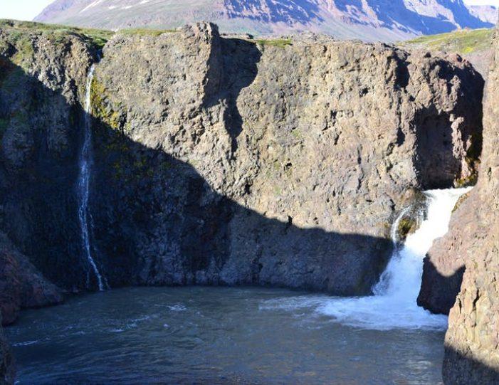 qorlortorsuaq-hike-qeqertarsuaq-disko-bay - Guide to Greenland6