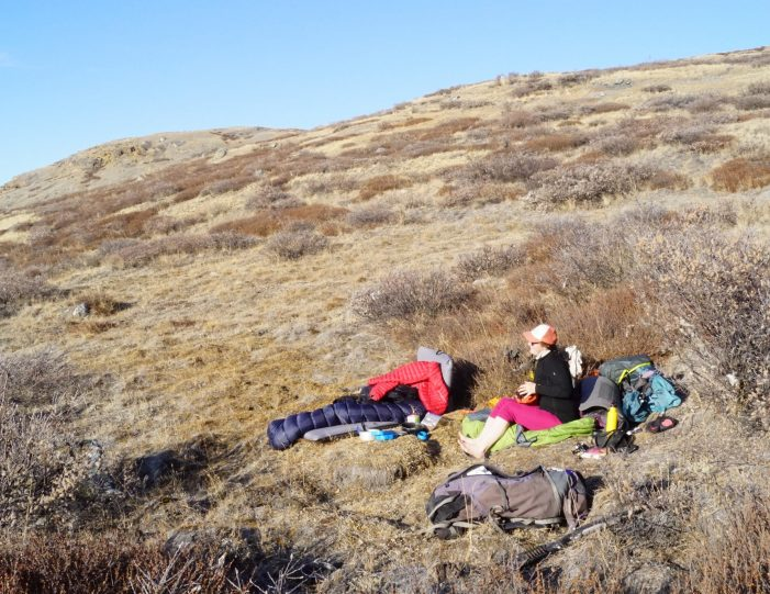 rom the Ice Cap to Unesco Heritage - 9 days | Kangerlussuaq | West Greenland - Guide to Greenland21