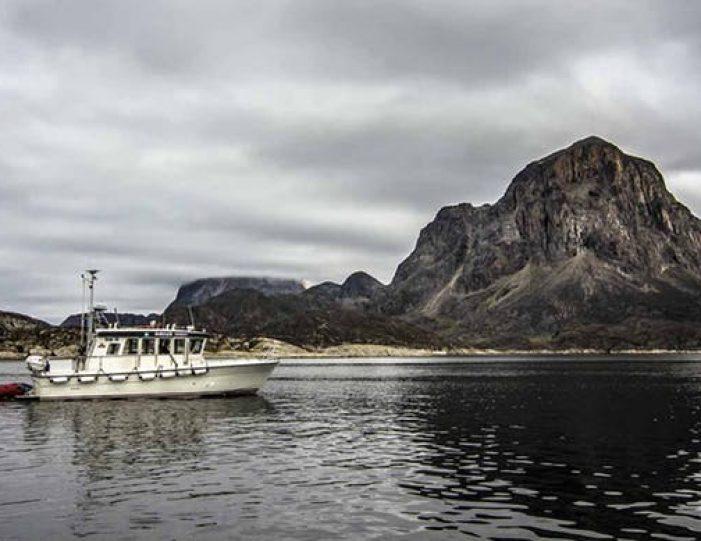 sea-safari-sisimiut-north-greenland - Guide to Greenland1