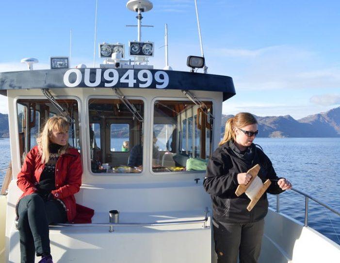 sea-safari-sisimiut-north-greenland - Guide to Greenland8