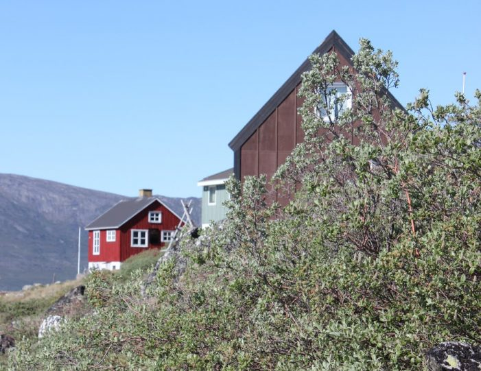 settlement-by-the-icefjord-private-tour-nuuk-Guide to Greenland1