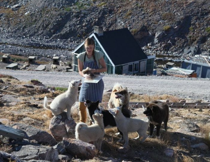 summer-in-ittoqqortoormiit-4-days-east-greenland-Guide to Greenland4