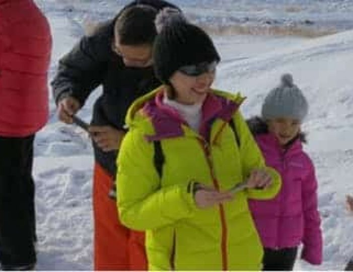 the-sled-dog-experience-ilulissat-disko-bay - Guide to Greenland4