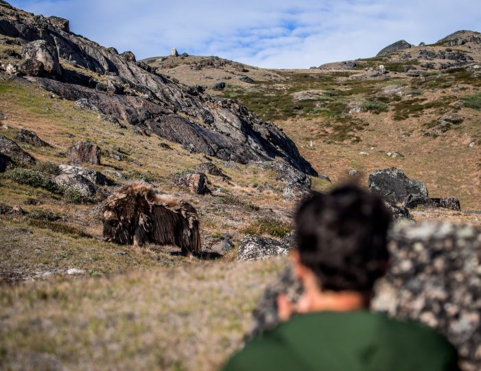 traditional-hunting-camping-kangerlussuaq-west-greenland - Guide to Greenland5