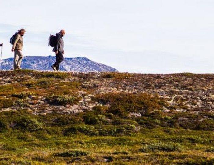 utv-glacier-expedition-ilulissat-ilimanaq-disko-bay - Guide to Greenland3