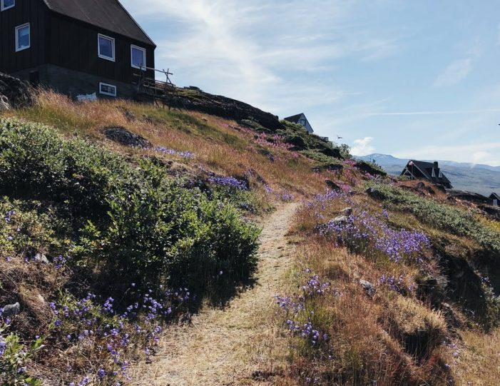 walking-around-kapisillit-settlement-in-nuuk-fjord-guide-to-greenland-1