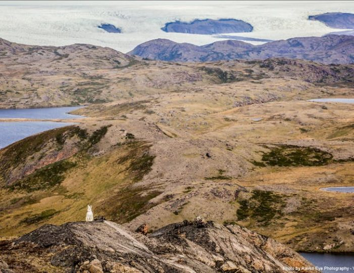 waterfall-hike-kangerlussuaq-west-greenland - Guide to Greenland18