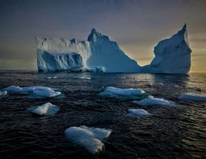whale-watching-and-iceberg-safari-tasiilaq-east-greenland - Guide to Greenland7