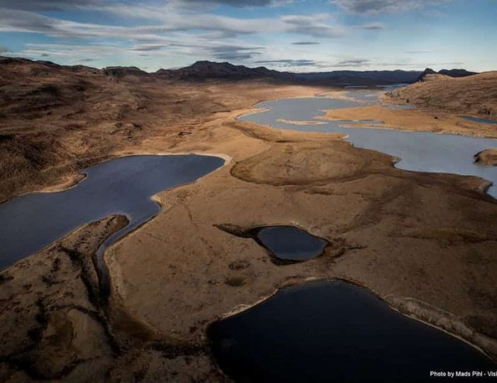 wildlife-hiking-safari-kangerlussuaq - Guide to Greenland10