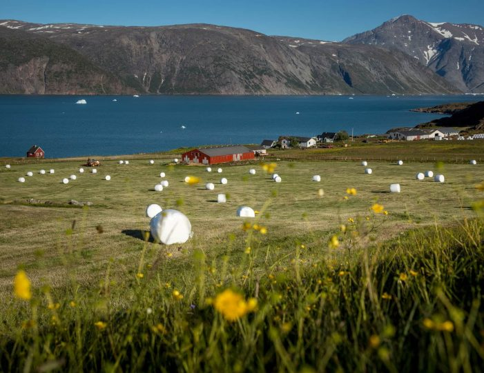 world-heritage-hvalsey-by-helicopter-qaqortoq-south-greenland - Guide to Greenland5